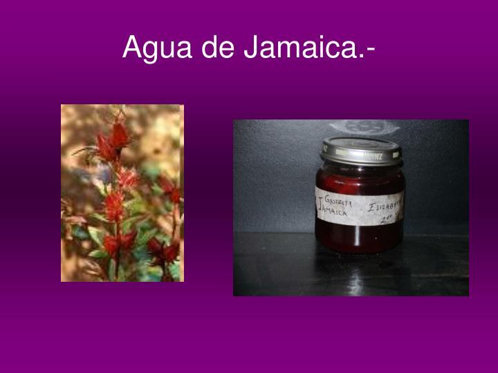 Agua de Jamaica.-