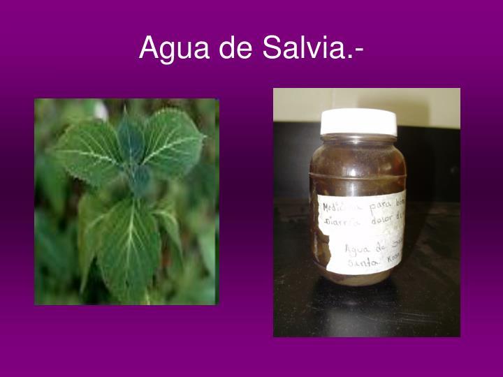 Agua de Salvia.-