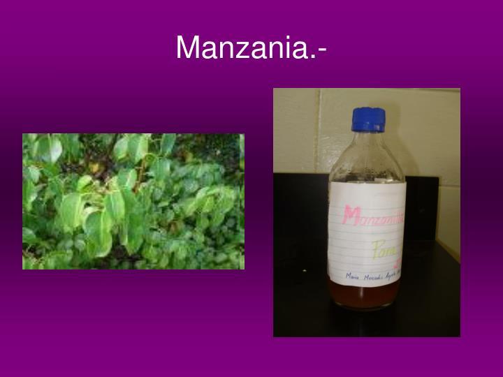 Manzania.-