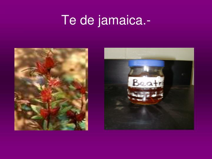 Te de jamaica.-