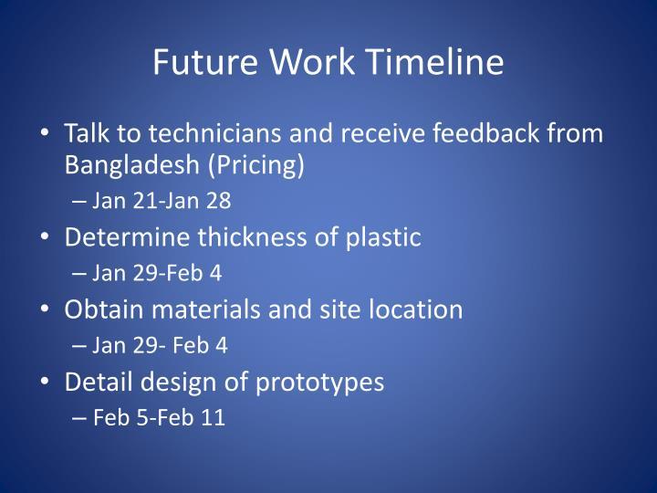 Future Work Timeline