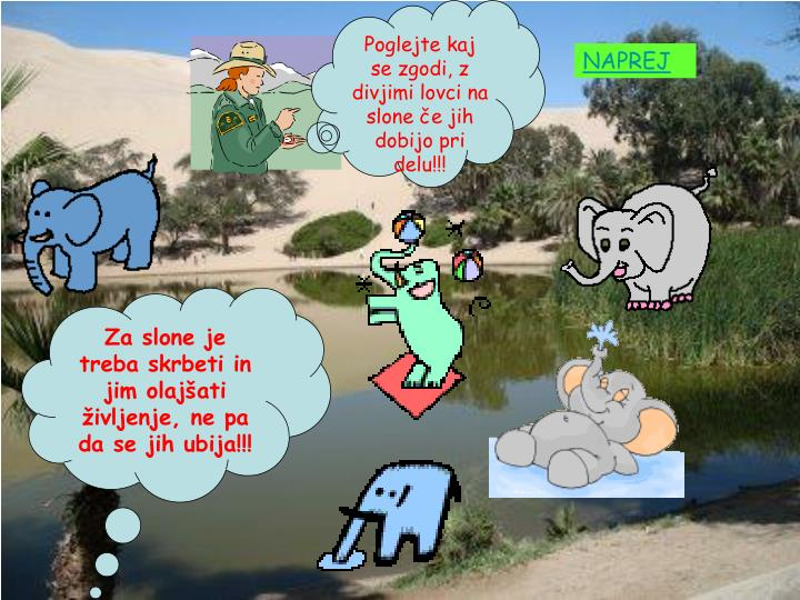 Poglejte kaj se zgodi, z divjimi lovci na slone če jih dobijo pri delu!!!