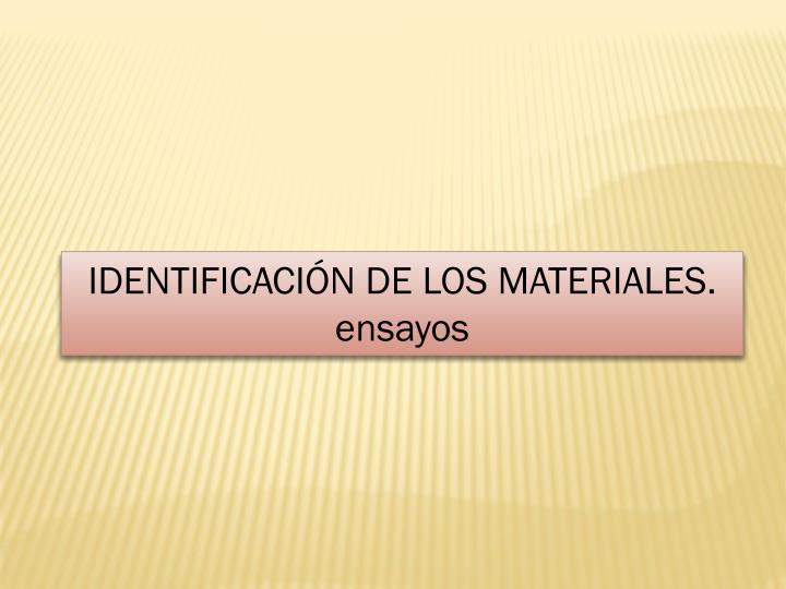 IDENTIFICACIÓN DE LOS