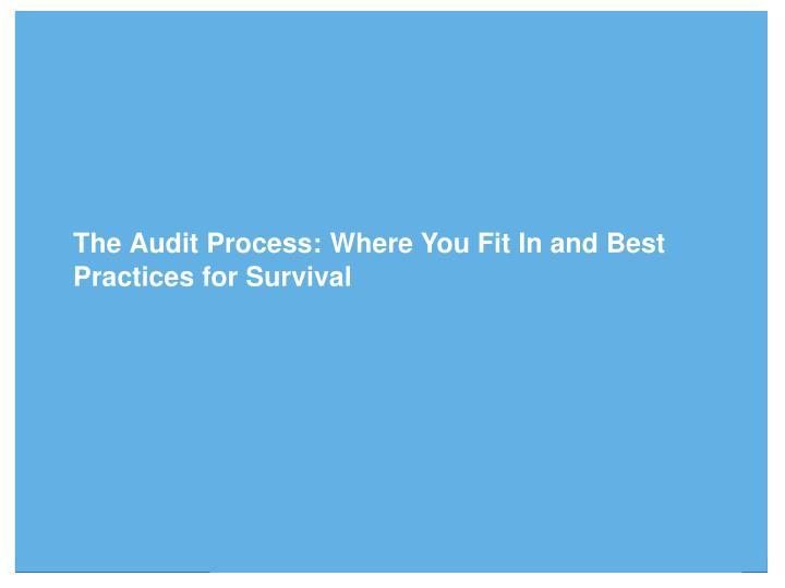 The Audit Process: