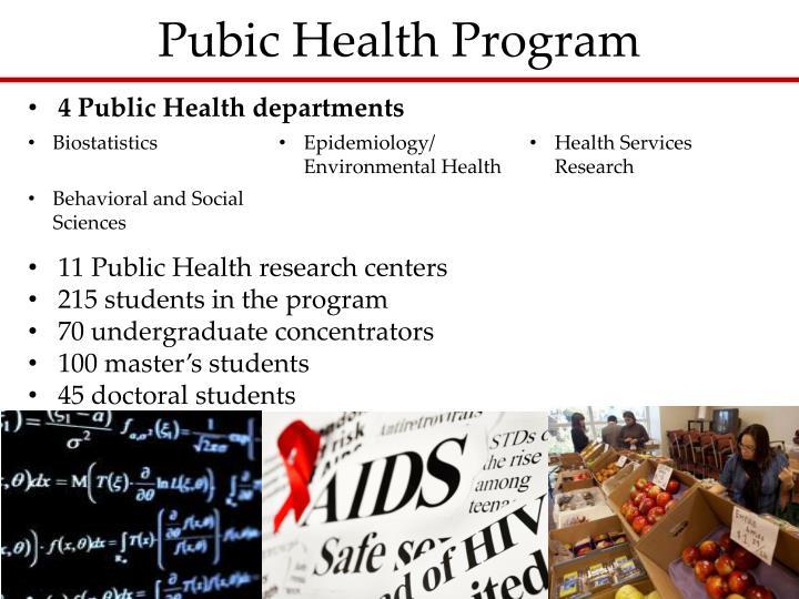 Pubic Health Program