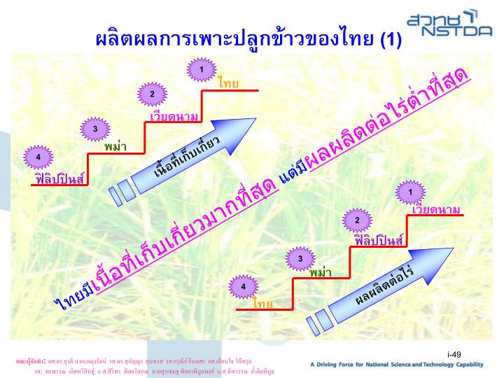 ผลิตผลการเพาะปลูกข้าวของไทย (1)