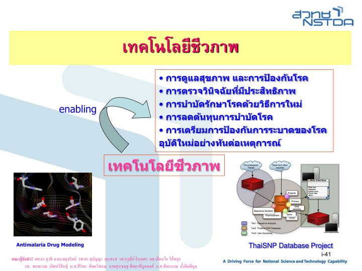 ThaiSNP Database Project