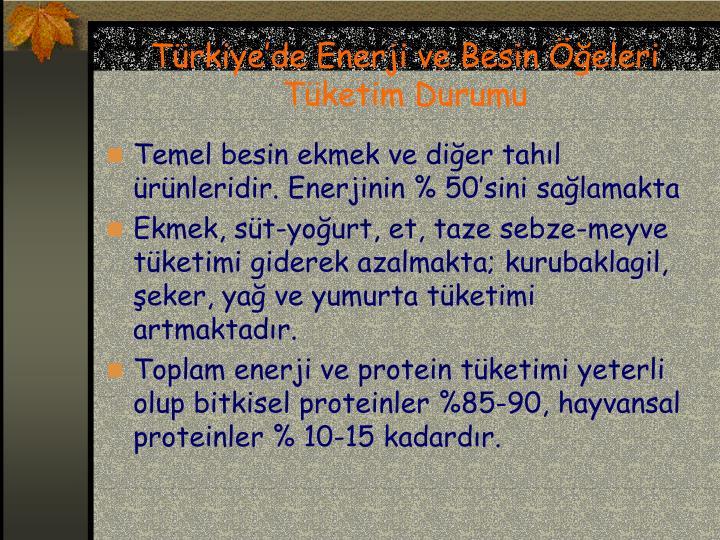 Türkiye'de Enerji ve Besin Öğeleri Tüketim Durumu