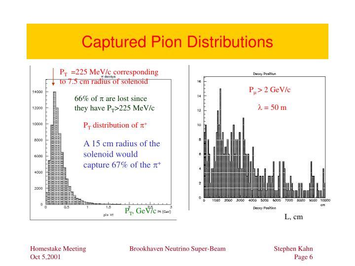 Captured Pion Distributions
