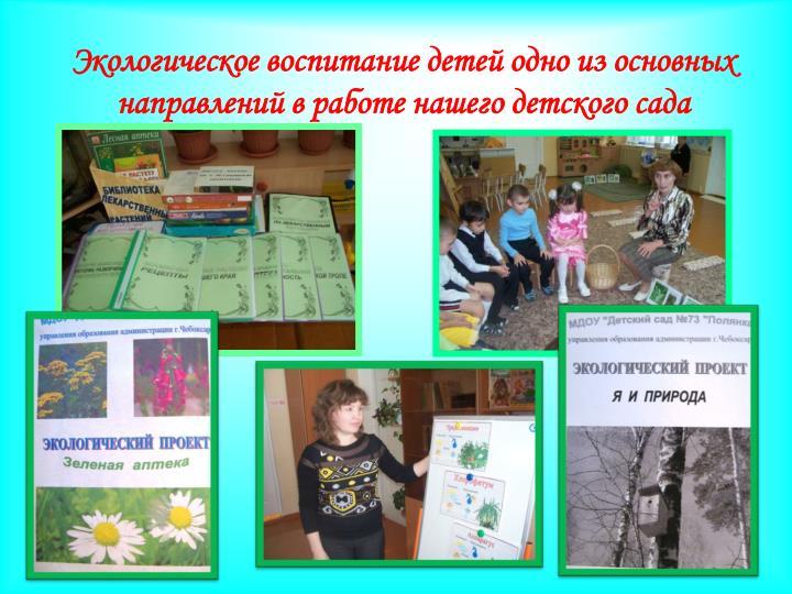 Экологическое воспитание детей одно из основных направлений в работе нашего детского сада