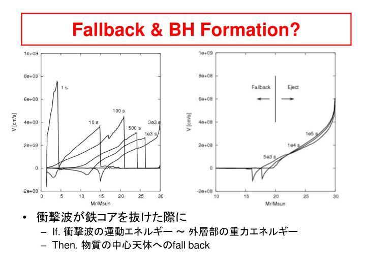 Fallback & BH Formation?