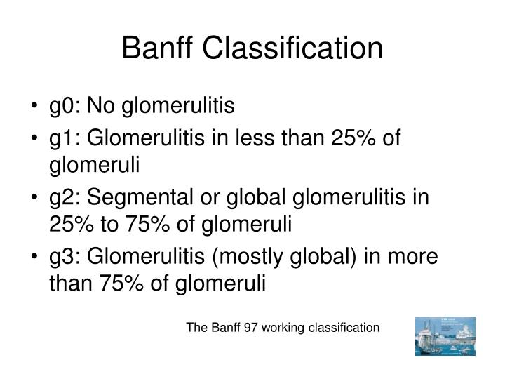 Banff Classification