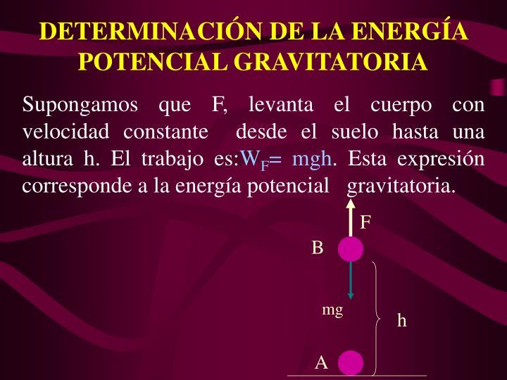 DETERMINACIN DE LA ENERGA POTENCIAL GRAVITATORIA