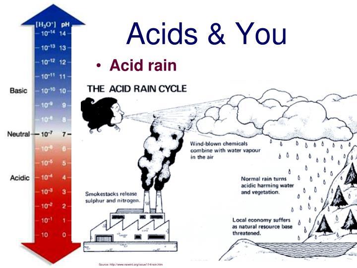 Acids & You