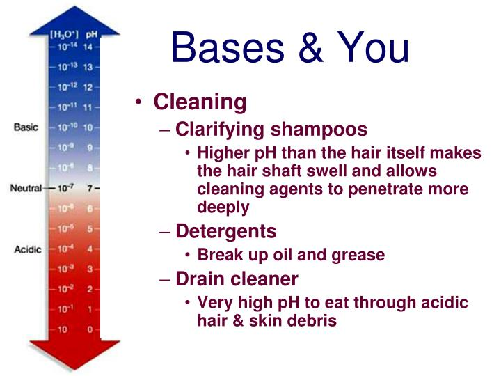 Bases & You