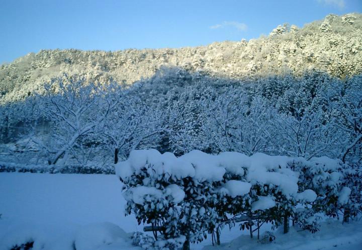 冬の時期は寒く,雪が降れば家の中に閉ざされます.