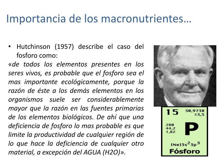 Importancia de los macronutrientes…