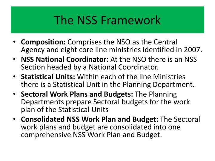 The NSS Framework