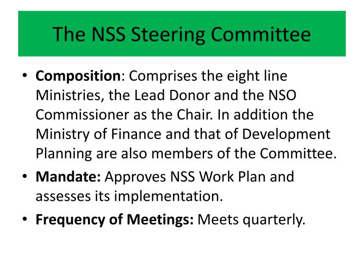 The NSS Steering Committee