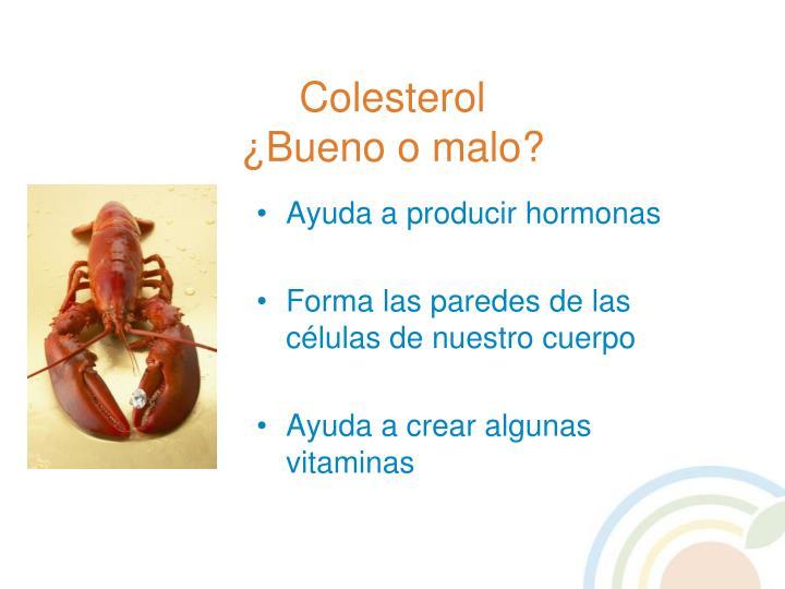 Ayuda a producir hormonas