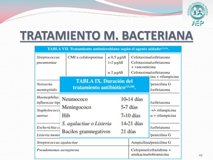 TRATAMIENTO M. BACTERIANA