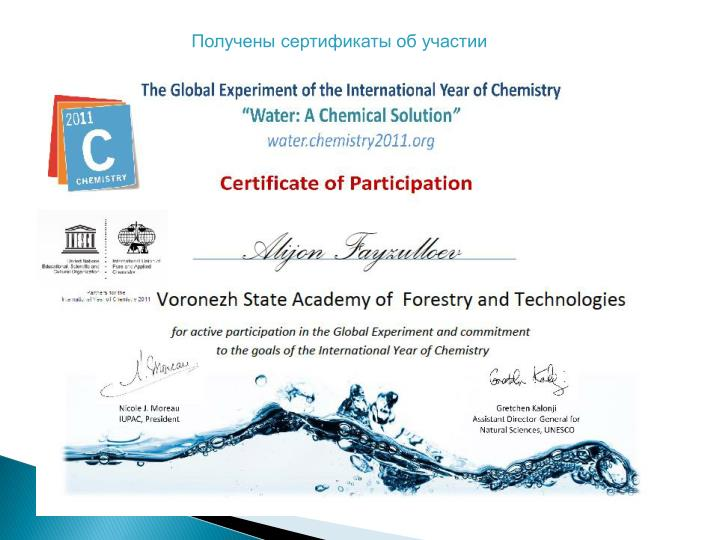 Получены сертификаты об участии