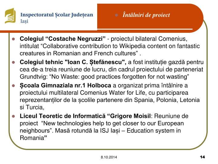 """Colegiul """"Costache Negruzzi"""""""