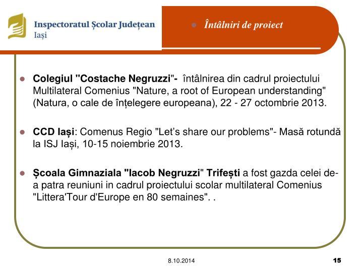 """Colegiul """"Costache Negruzzi"""