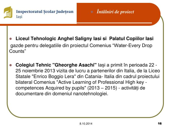 Liceul Tehnologic Anghel Saligny