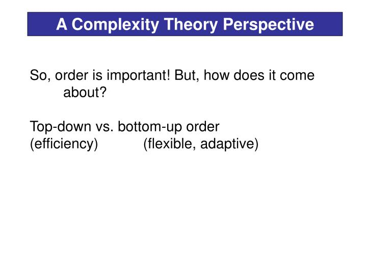 A Complexity Theory Perspective