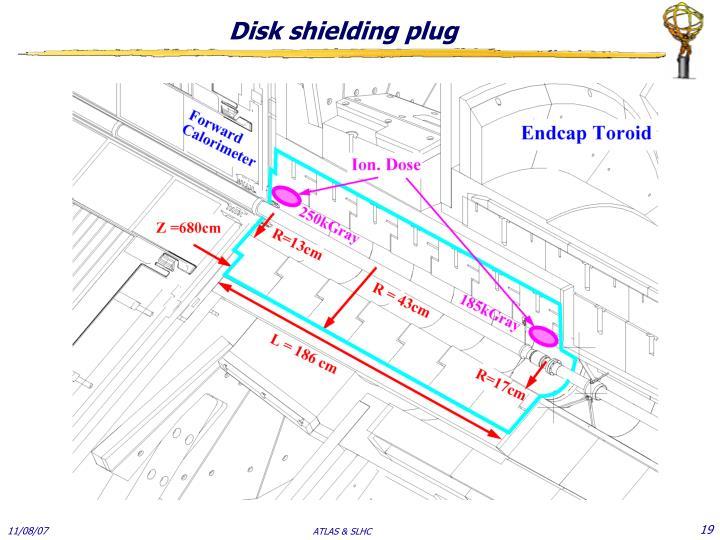 Disk shielding plug