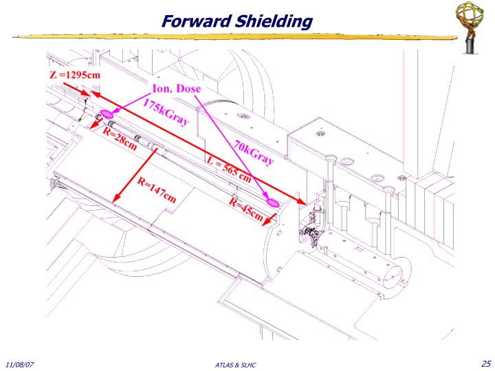 Forward Shielding