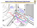 hole in front of the forward calorimeter