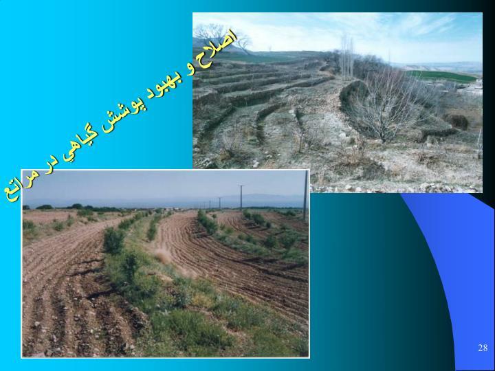 اصلاح و بهبود پوشش گياهي در مراتع