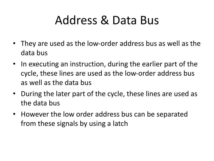 Address & Data Bus