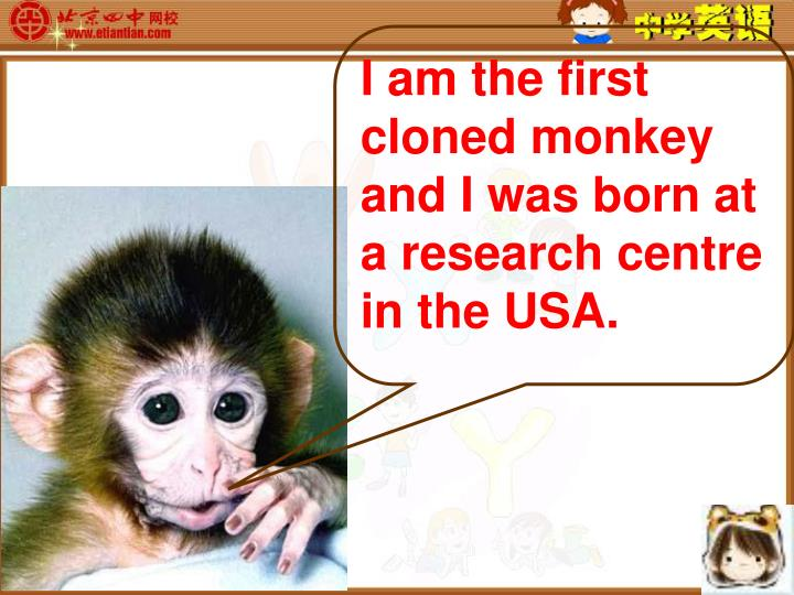 I am the first cloned monkey and I was born at a research centre in the USA.