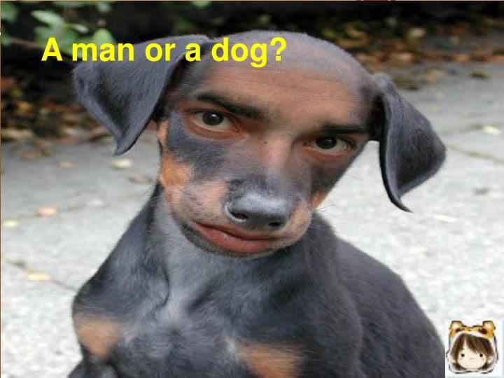 A man or a dog?