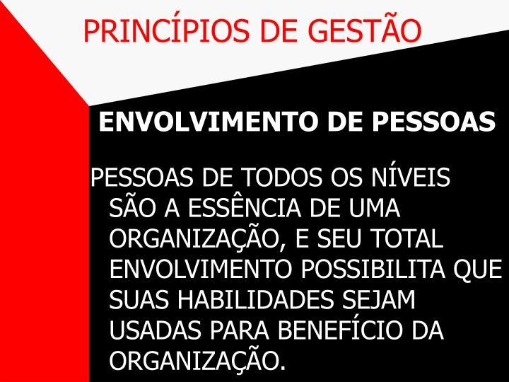 PRINCÍPIOS DE GESTÃO