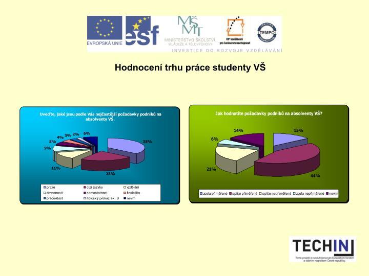 Hodnocen trhu prce studenty V