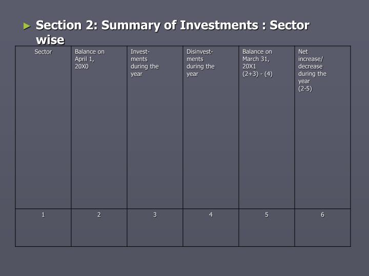 Section 2: Summary of Investments : Sector wise