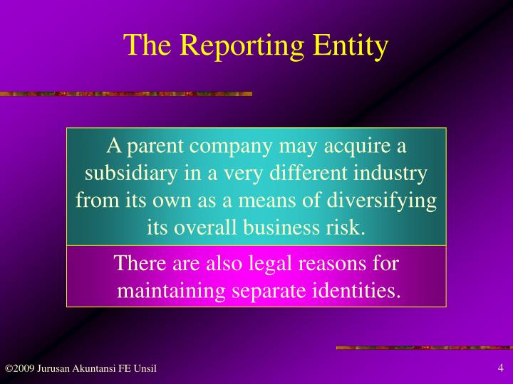 The Reporting Entity