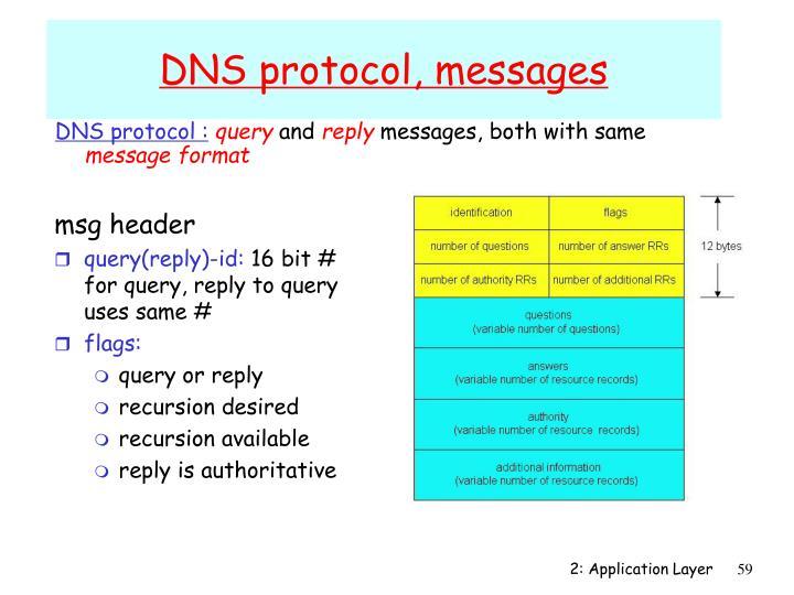 DNS protocol :