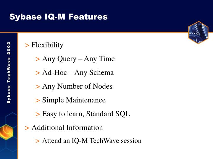 Sybase IQ-M Features