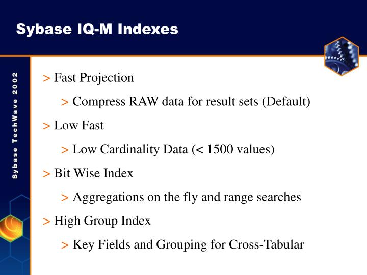 Sybase IQ-M Indexes