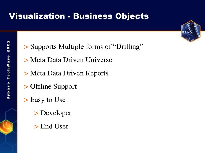 Visualization - Business Objects