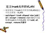 trunk vlan2