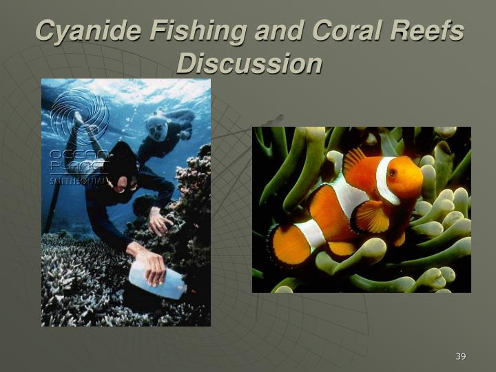 Cyanide Fishing and Coral Reefs