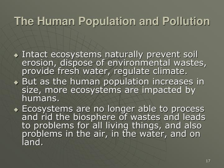 The Human Population and Pollution