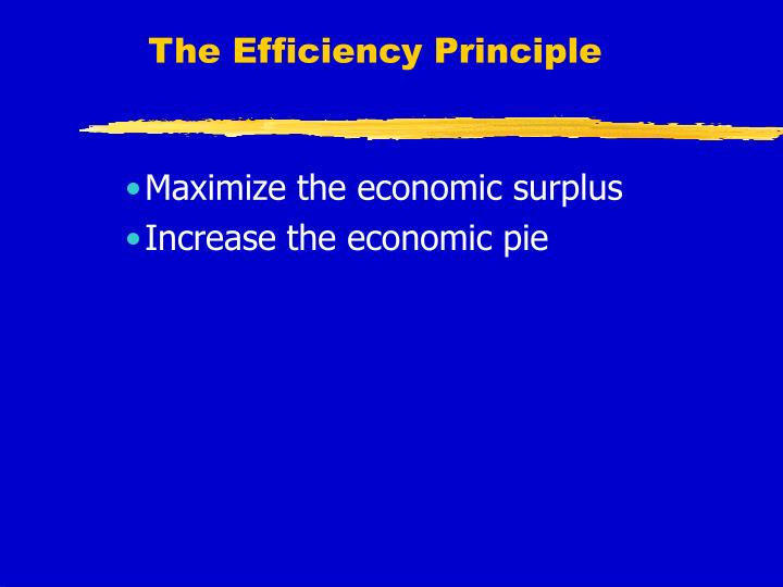 The Efficiency Principle