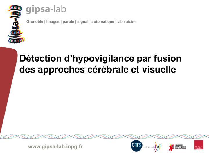 Détection d'hypovigilance par fusion des approches cérébrale et visuelle